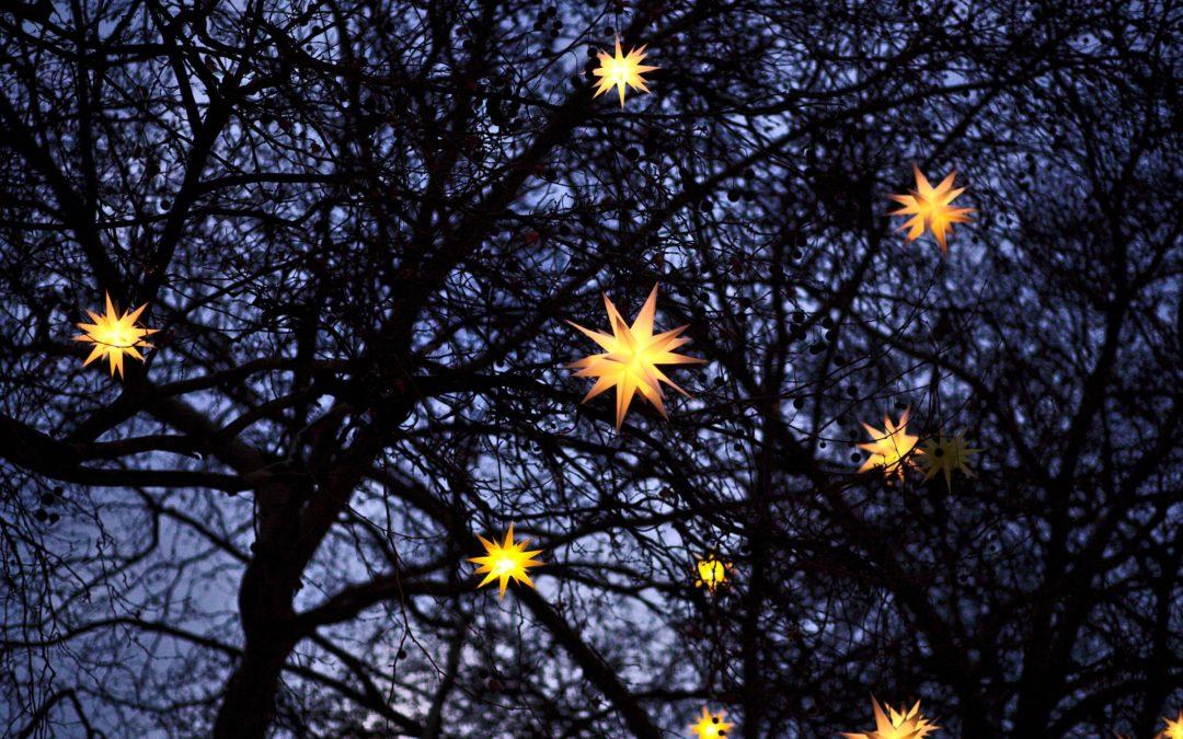 Get us to hang your Christmas lights